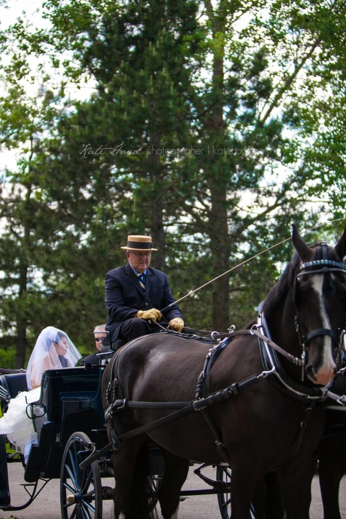 Tralee Orangeville Wedding Photos
