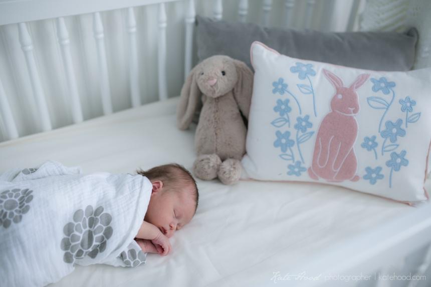 Bracebridge Newborn Baby Photographer